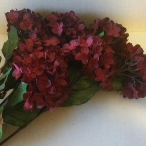 Seven Dark Burgundy Hydrangea Spray